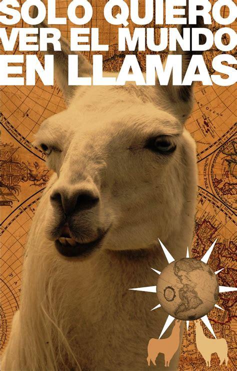 Imágenes de risa con animales: Chistes de mascotas para ...