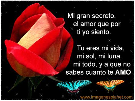 Imágenes de rosas con frases románticas | Imagenes de amor ...