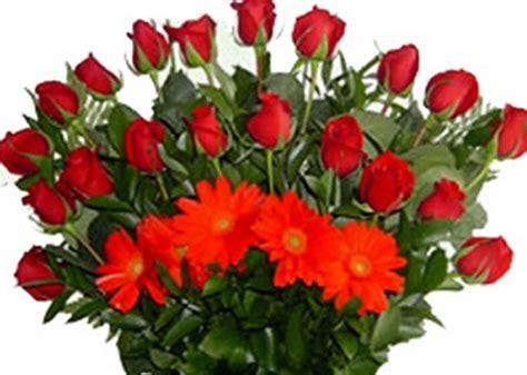 imagenes de rosas rojas hermosas con movimiento | Imagen ...