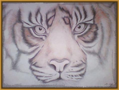 Imagenes de Tigres a Lapiz Bonitos y Espectaculares ...