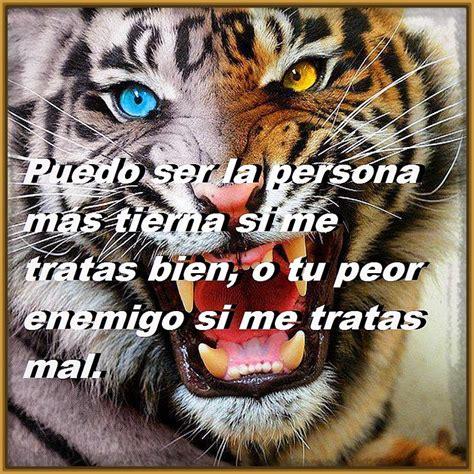 imagenes de tigres con frases de amor Archivos   Fotos de ...