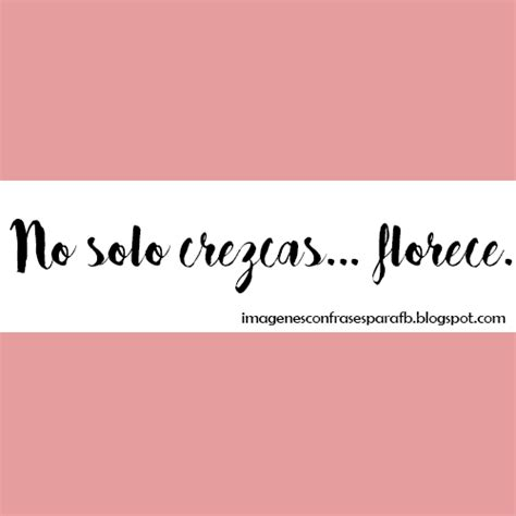 Imagenes Gratis: Frases bonitas para compartir en instagram