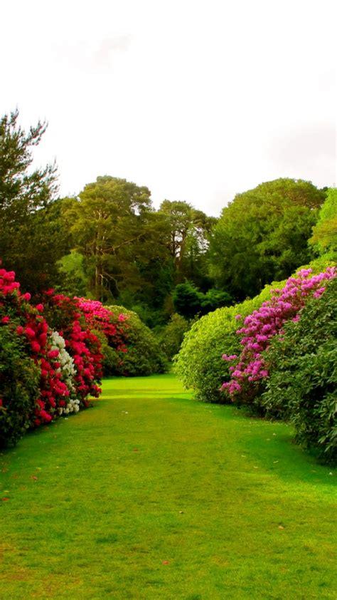 Imagenes paisajes y consejos para el jardín