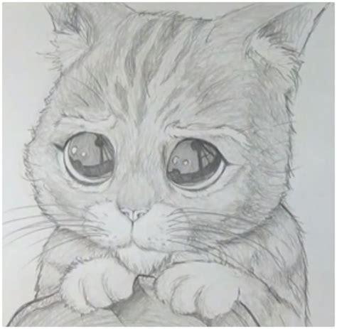 Imagenes para Dibujar Gatos a Lapiz | Dibujos de Gatos