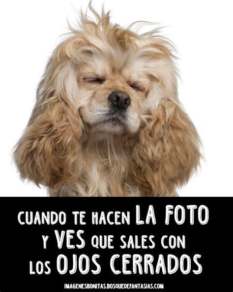 IMÁGENES PARA WHATSAPP ® Fotos graciosas para perfiles
