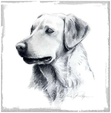 imagenes perros para dibujar Archivos | Imagenes de Cachorros