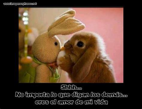 Imagenes Romanticas Chistosas Imagenes Para Facebook ...