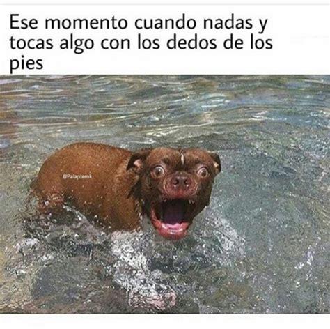 Imágenes y Memes chistosos 2016   Imagenes chistosas