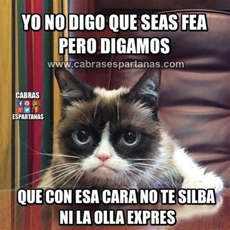 Imágenes y memes de humor | Cabras Espartanas
