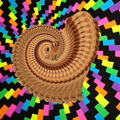 Imagens para Celular   Imagens de Imagens para Celular