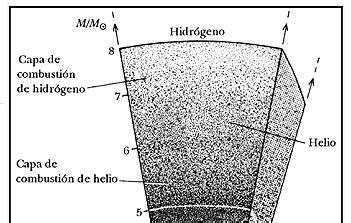IV. GNESIS Y EVOLUCIN
