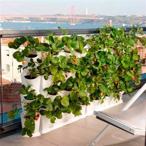 Jardin vertical au balcon – aménager sa petite oasis de ...