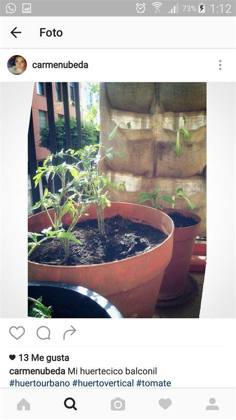 Jardín vertical   Comunidad Leroy Merlin