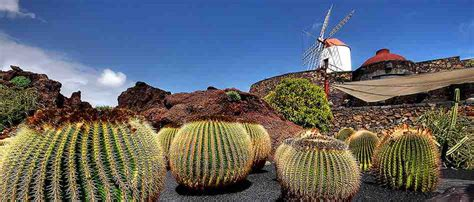 Jardines fabulosos que puedes encontrar por todo el mundo