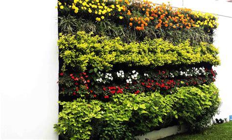 Jardines Verticales Huichol – 4 Tipos de jardines ...