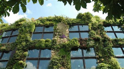 Jardines Verticales Y Muros Verdes | Acuarios Naturales
