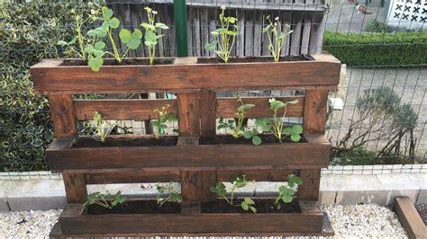 La Tarde del Bricolaje: Jardines verticales