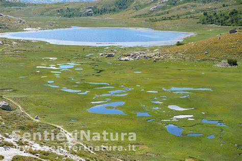 Lago di Nino dalla casa Forestale di Poppaghia