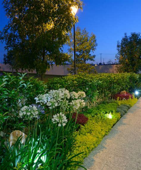 Las 10 mejores plantas de exterior para jardines modernos