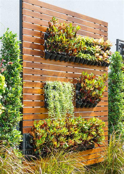 Los beneficios de tener un jardín vertical en tu hogar ...