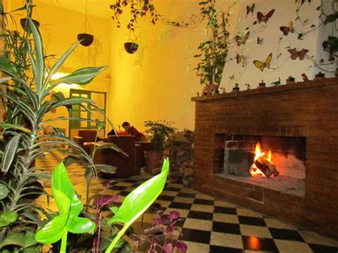 Los Jardines Colgantes de Babilonia Hostel Montevideo ...