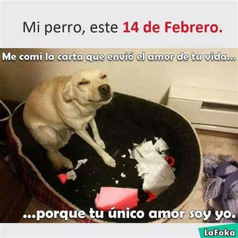 Meme mi perro el 14 de febrero   Memes en internet   Crear ...