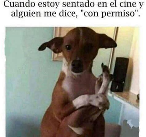 memes, chistes, memes en español   image #4331446 by ...