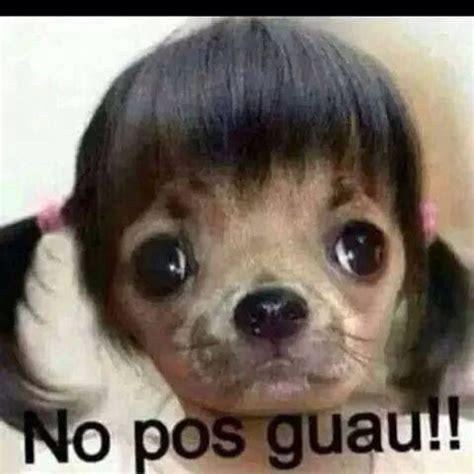 MEMES CHISTOSOS | Memes | Pinterest | Gracioso y Meme
