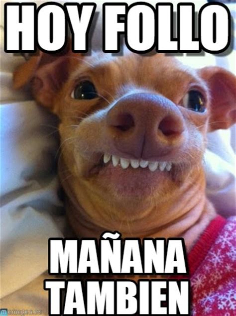 Memes de perros graciosos con chistes muy divertidos