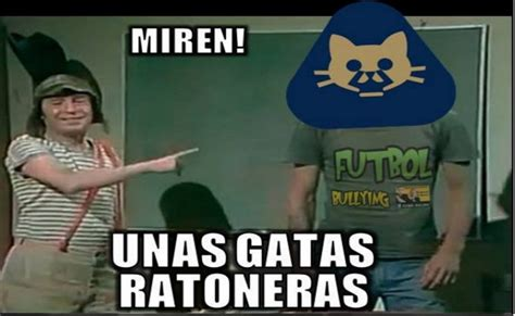 Memes de Pumas   Imagenes chistosas