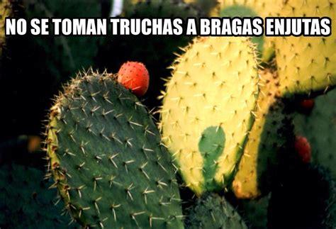 Memes de refranes | GARRILENGUA
