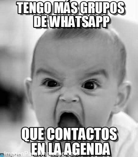 Memes e imágenes divertidas para los grupos de WhatsApp ...