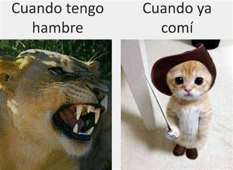 Memes graciosos para morirse de risa   Humor   Taringa!
