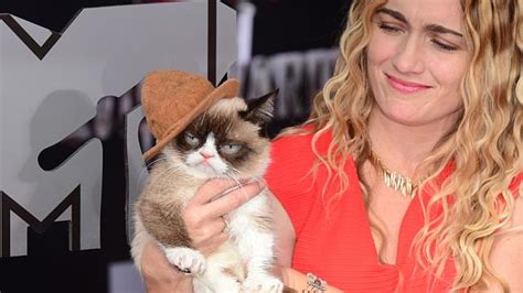 MTV Movie Awards 2014: Grumpy Cat was the real star