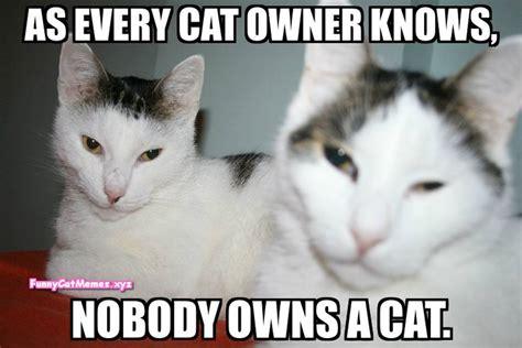 Nobody Owns A Cat!   Funny Cat MEME