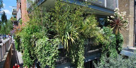 Ocho plantas para que tu terraza parezca una jungla