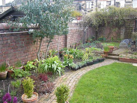 Organizar mi jardín | Página 7