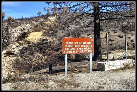 Panoramio   Photo of Chilao Flats, station fire damage.