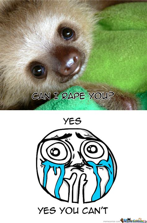 Pics For > Cute Sloth Memes