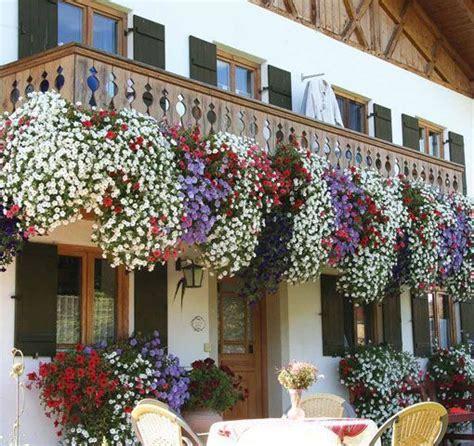 plantas colgantes para balcones   Buscar con Google ...
