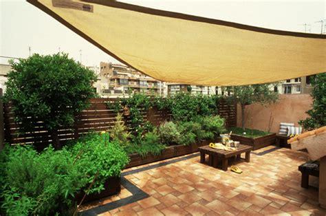 Plantas para terrazas   Plantas para.com