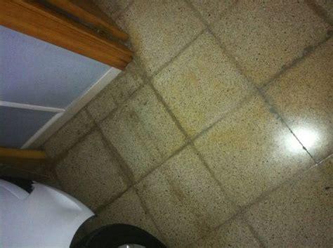 Presupuesto para pulir suelo de terrazo por avería de agua ...