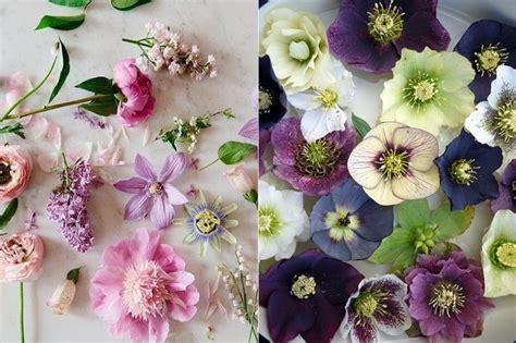 Ramos de flores silvestres | Maria victrix