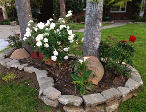Reina en un Jardín de Rosas