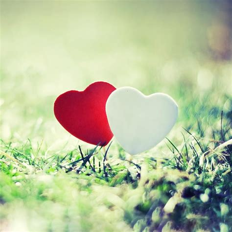 Romantic Love Live Wallpaper   Android Apps on Google Play