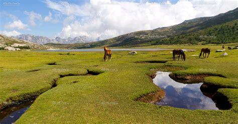 Scopri le montagne della Corsica | andareincorsica.com