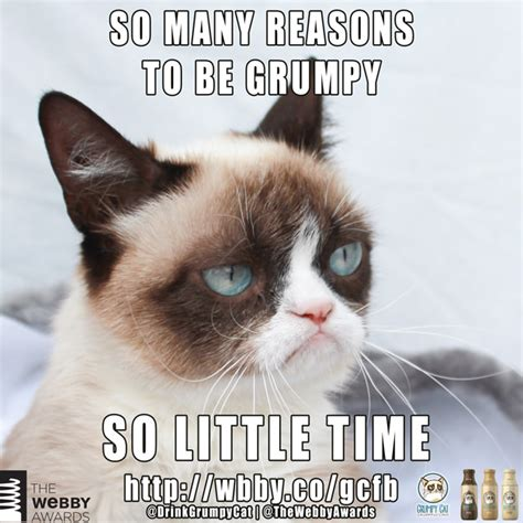 So many reasons to be grumpy! | Grumpy Cat®