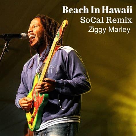SoCal Adds His Own Tropical Twist On Ziggy Marley s  Beach ...