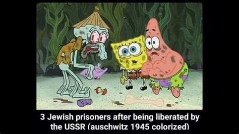 Spongebob WW2 meme compilation   YouTube