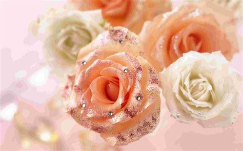 Розы со стразами Обои   Цветы  Flowers    Природа ...